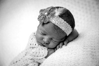 Baby Dovie Grace Newborn Portraits B&W